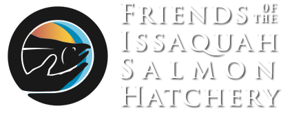 Friends of Issaquah Salmon Hatchery
